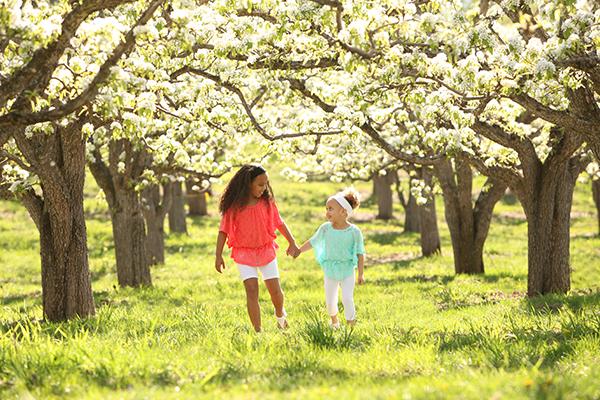 Children spring blossom in kelowna